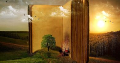 Libro di poesie: come crearlo in breve tempo